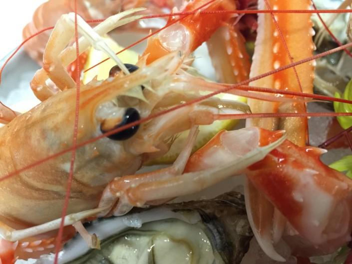 Ristorante Maestrale Roma pesce - I crudi freschi, scampi in primo piano